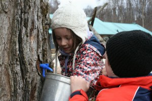 Maple_Wheelers kids collecting sap_verbal permissions_Mark Wheeler