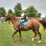 IMG_7224 Horse Cantering, Middleville Fair 2016