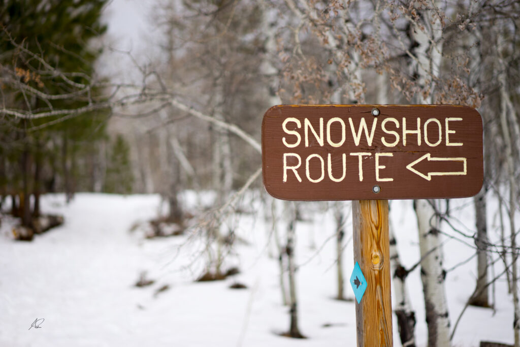 shoeshoe route wooden sign